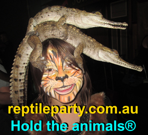 reptile party shows Melbourne