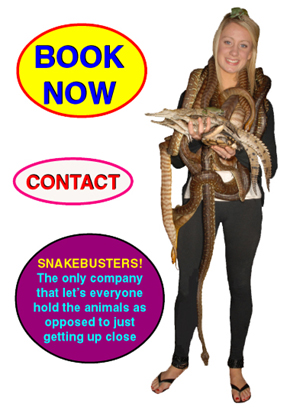 The best kid's party is a Snakebusters kids party!